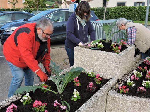 La commission fleurissement réalise les plantations de fleurs et plantes vivaces